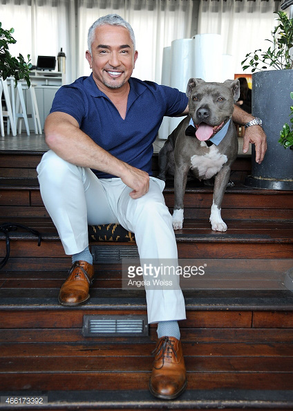 Emily Aznavourian Male Grooming for Cesar Millan